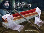 Sirius' wand