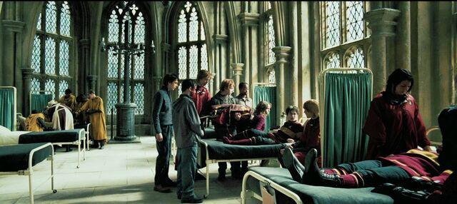 File:Harry-potter4-movie-screencaps.com-6740.jpg