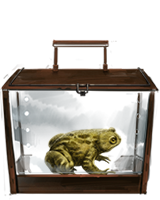 File:Common Toad.png