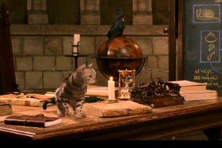 Fil:Professor mcgonagall cat.png