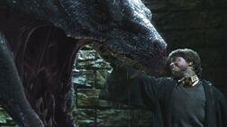 Harry kills Basilisk