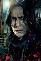 TDHp2 Textless Poster Snape close