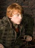 Ron in Hogs head