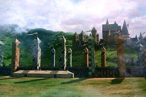 Quidditch Pitch.JPG