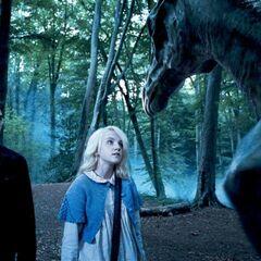 Гарри и Полумна в Запретном лесу