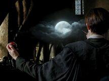 Lupin-boggart