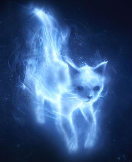 File:Patronus Cat2.jpg