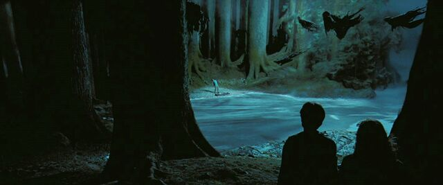 File:Dementor attack at Black Lake.jpg