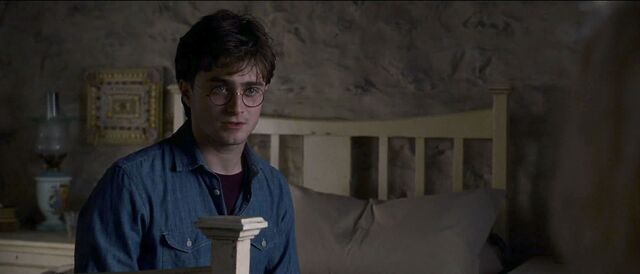 File:Harry Potter inside the Shell Cottage.jpg