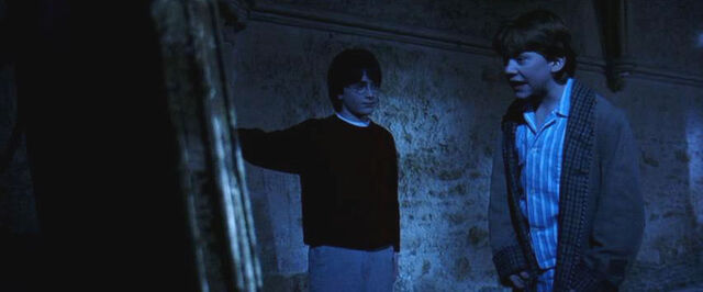 File:Mirror of erised harry and ron.jpg