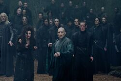 DH2 Death Eaters with Voldemort during the battle