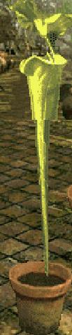 File:Screenshot 405 (Nintendo DS).png