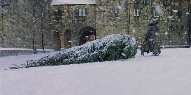 File:Hagridtree.png