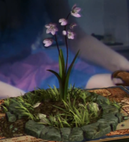 File:Squill.png