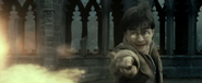 Harryconfringo