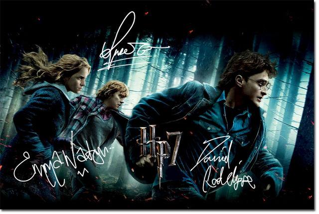 File:Harry-potter-cast-3.jpg