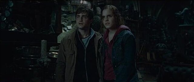 File:Harry potter and Hermione Room of Requirements.jpg