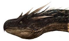 Dragon WB F4 HeadDetailHorntail Illust 100615 Land