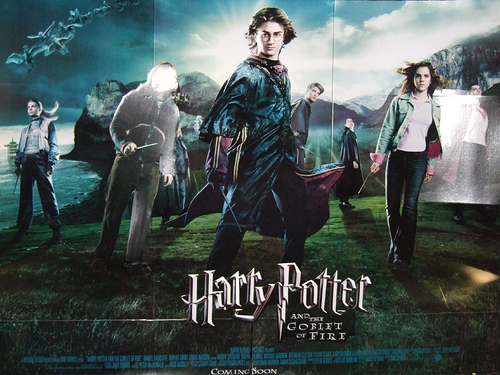 Image - Harry Potter And The Goblet Of Fire standee.jpg   Harry ...