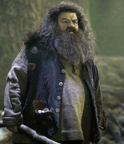 File:Hagrid's Coat.jpg