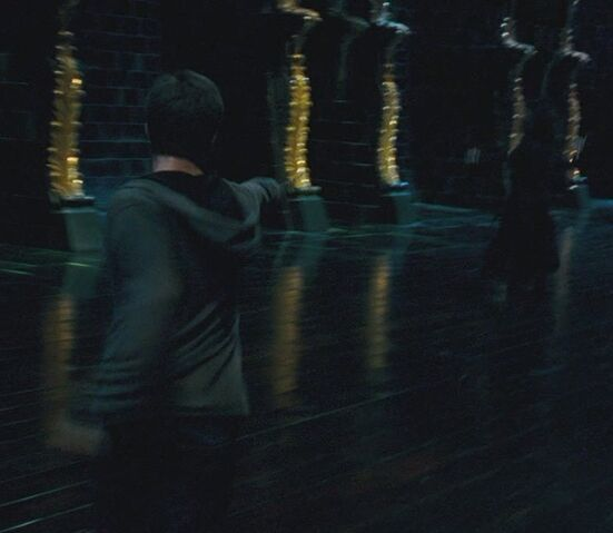 File:Harry casting the Cruciatus Curse.jpg