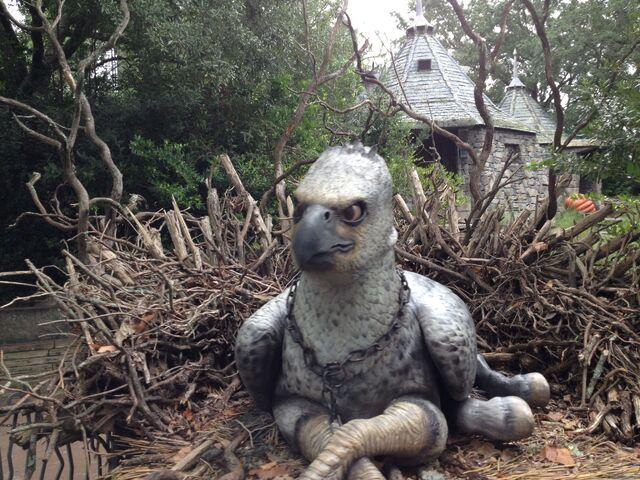 File:Buckbeak 2.jpg