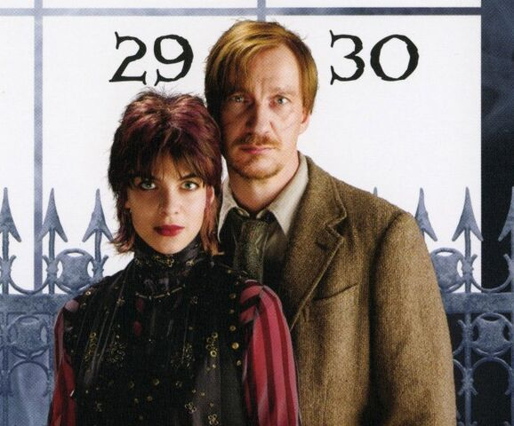 File:Remus&Tonks(Calendar).jpg