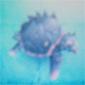 RF4 Tortoise