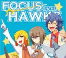 Focus on the Hawks