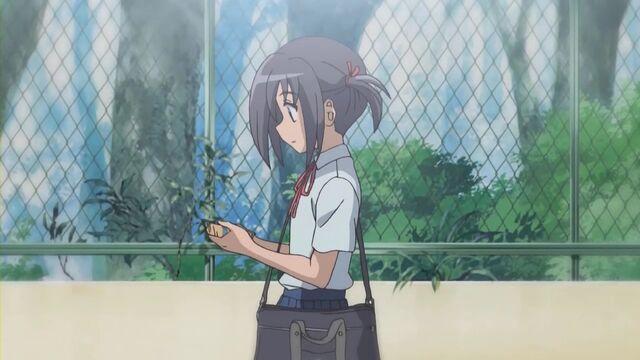 File:-SS-Eclipse- Hayate no Gotoku! - 25 (1280x720 h264) -A3F72D58-.mkv 000591491.jpg