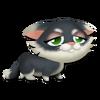 Tuxedo Kitten Tired