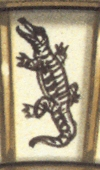 Crocodile (caiman)