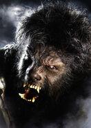 Wolf Man (2010) teaser 002