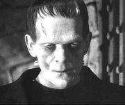 Frankenstein's Monster (Universal Classics) 002