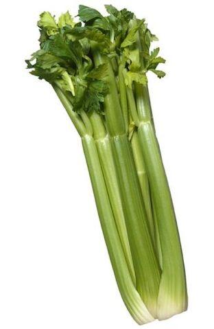 File:Celery big.jpg