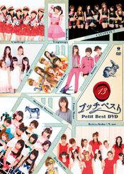 PetitBest13-dvd