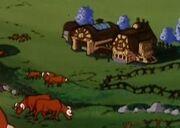 Bundas Cows