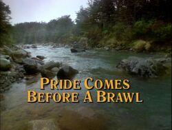 Pride brawl title