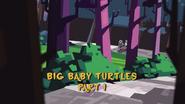 Big Baby Turtles 001
