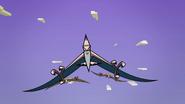 Pterodactyls 043