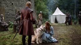 Sansa Stark, Dama y Joffrey Baratheon HBO.png