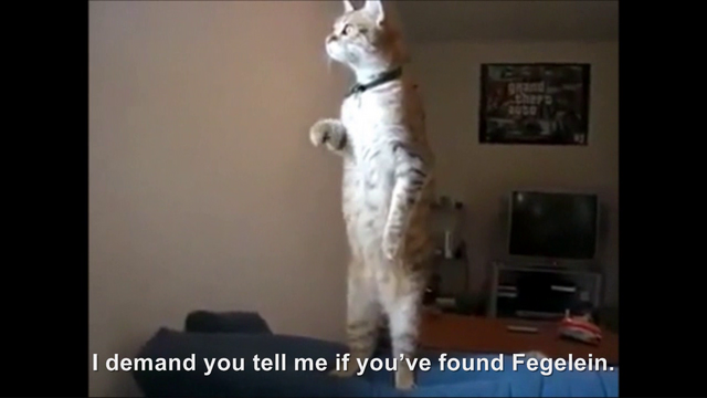 File:Hitler encounters the Standing Cat.png