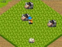 Hm64 cow grass sheep