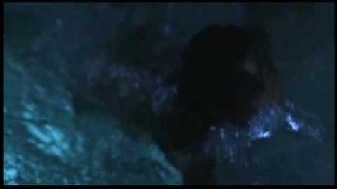 THE PROWLER 1981 TRAILER