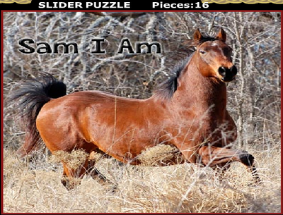 Slider Puzzle MadamFromage's Cabin Sunny Glade Isle