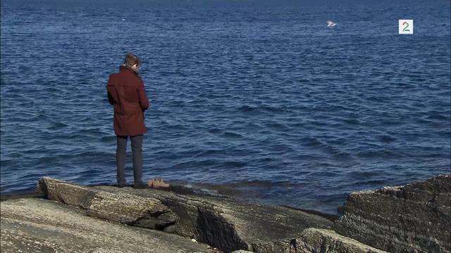Fil:Albert ved fjorden.png
