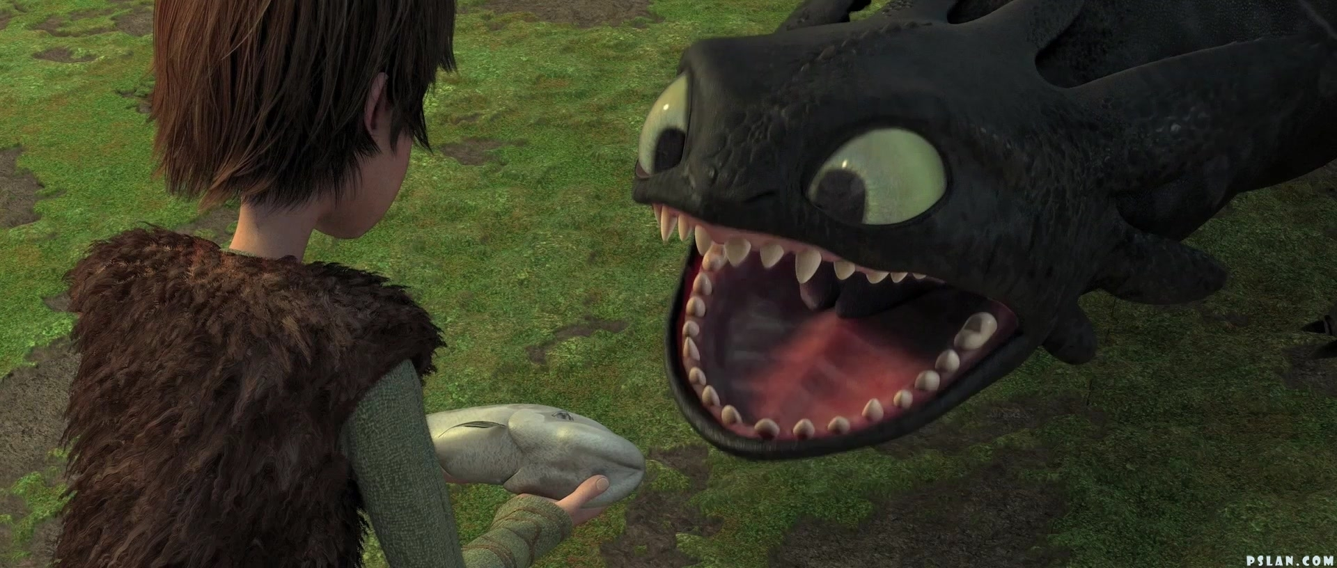 how old is hiccup in how to train your dragon