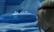 Snow Wraith Pack 1