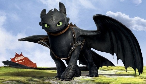 Image result for toothless pic