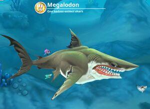 Megalodon (World) - Hungry Shark Wiki - Wikia